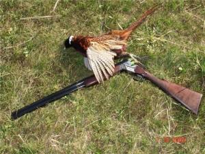 Правильный выбор оружия для охоты